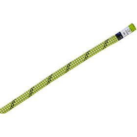 Edelrid Starling Pro Dry Halbseil 8,2mm 60m Oasis